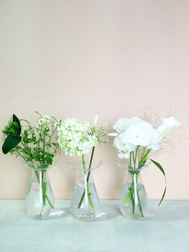 先週お届けしたお花の定期便