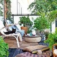 ベランダ・バルコニーに置く観葉植物の注意点!寒さや風水、置き場所も
