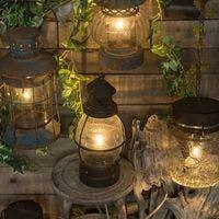 【徹底比較】観葉植物を室内ライトで育てられるか?