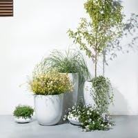 TERRANIAS(テラニアス)は優しい形と重厚感が魅力の鉢カバー