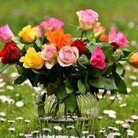 あの方に何色の花束を贈りますか?飾り方や贈り方も
