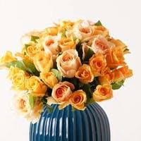 オレンジ色のバラは花言葉が豊富!大切な方に贈りたいおすすめ3選