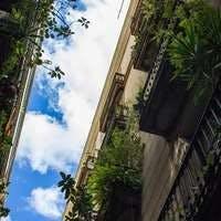 ベランダ(バルコニー)の観葉植物!選べるセットで即イメチェン