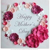 母の日に贈ろう!胡蝶蘭と観葉植物がふさわしい理由とおすすめ3選