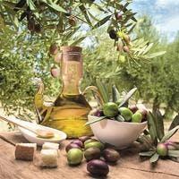 オリーブの木!室内と地植えの育て方と剪定~おすすめ品種もご紹介