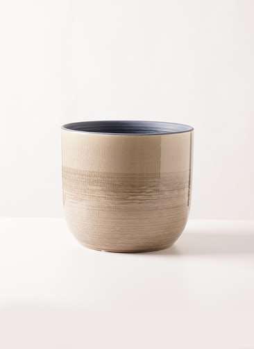 verite (ヴェリテ) L brown #clay(クレイ) 170-847-180