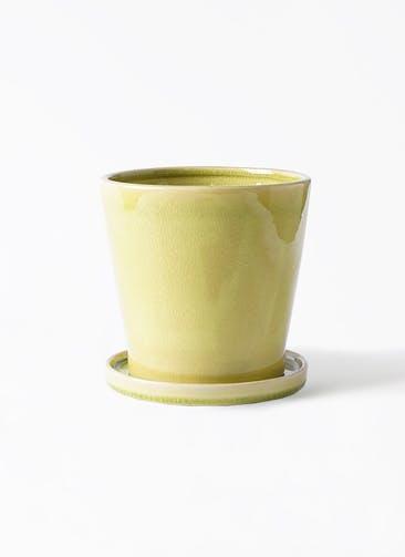 鉢カバー ベラ 5号鉢用 ニューグリーン #ミュールミル CH-035NG