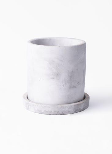 鉢カバー  マルモ 白 SSS #ミュールミル CX600T