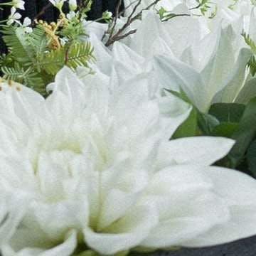 ダリア アレンジメント 白(ホワイト)