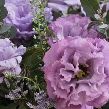 トルコキキョウ アレンジメント 紫(パープル)