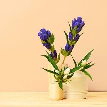 リンドウ 花束