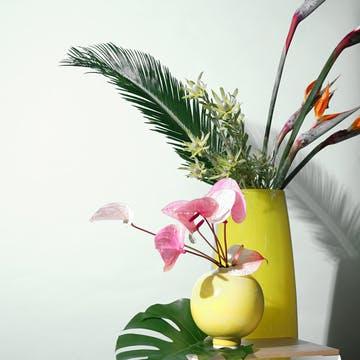 南国系 花束