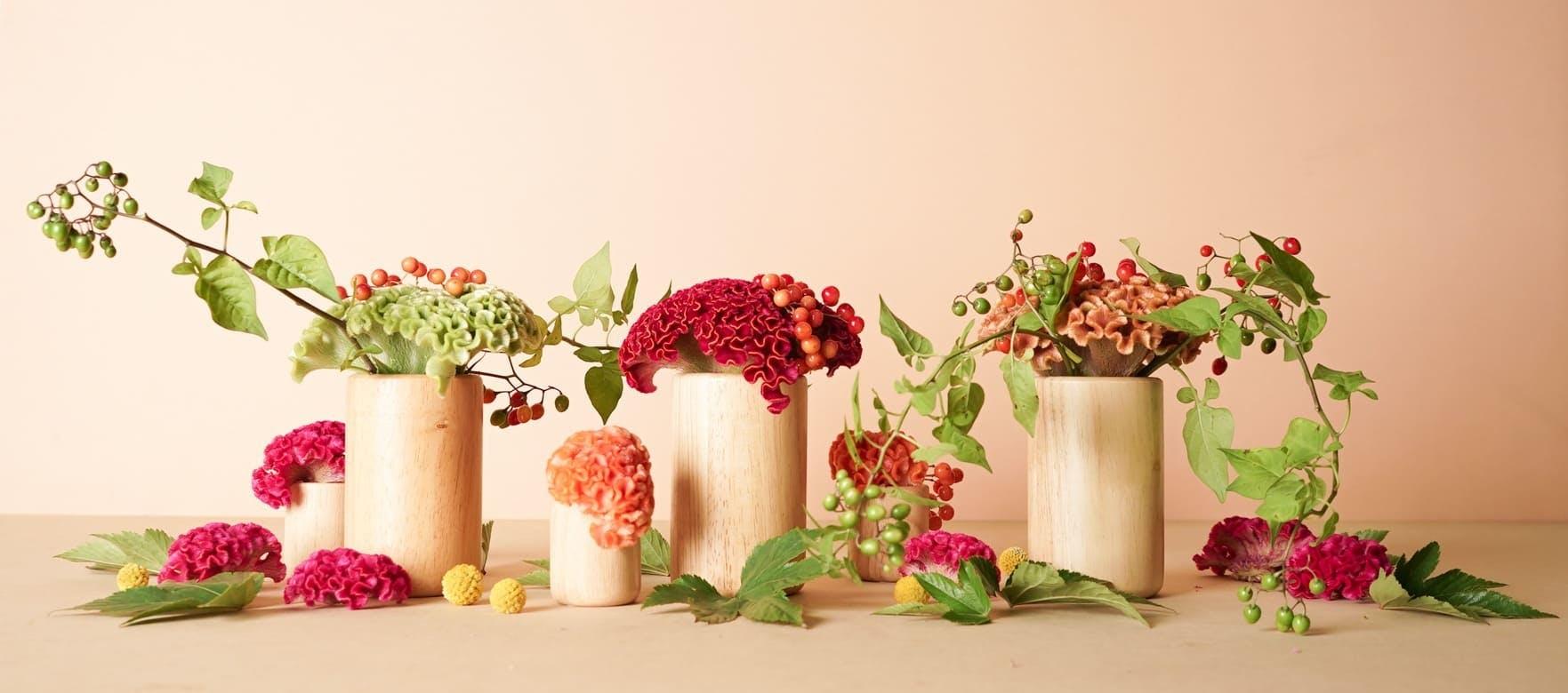 ケイトウ - お花と植物のギフト通販 HitoHana(ひとはな)