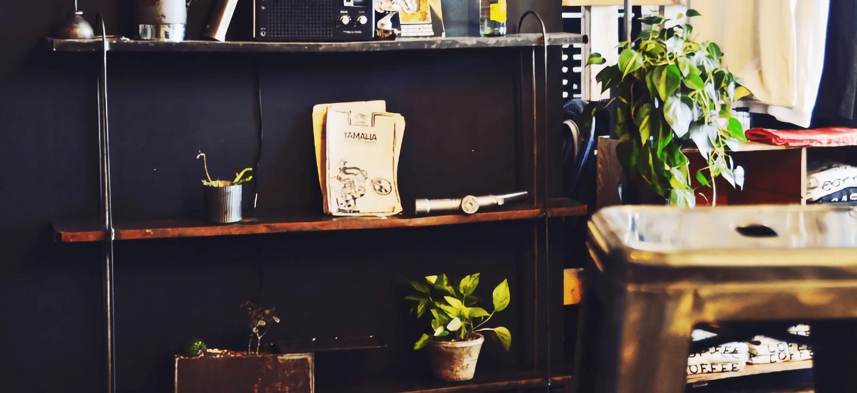 観葉植物 男前 - お花と植物のギフト通販 HitoHana(ひとはな)