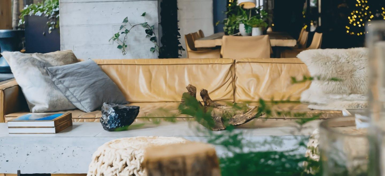 観葉植物 ヴィンテージ - お花と植物のギフト通販 HitoHana(ひとはな)