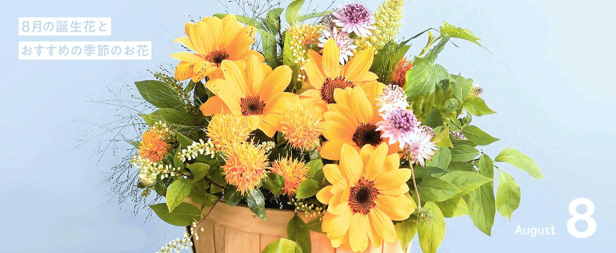 8月の誕生花 - お花と植物のギフト通販 HitoHana(ひとはな)
