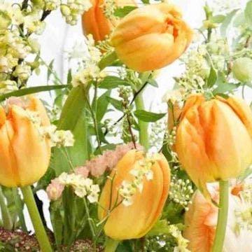 チューリップ 花束 オレンジ