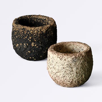 Coral Pot (コーラルポット)