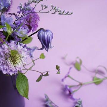 フラワーギフト 紫(パープル)