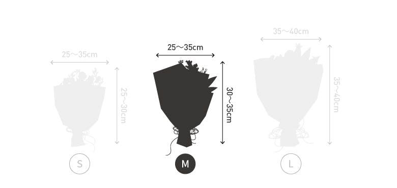サイズ目安 高さ30〜35cm 幅25〜30cm 30本
