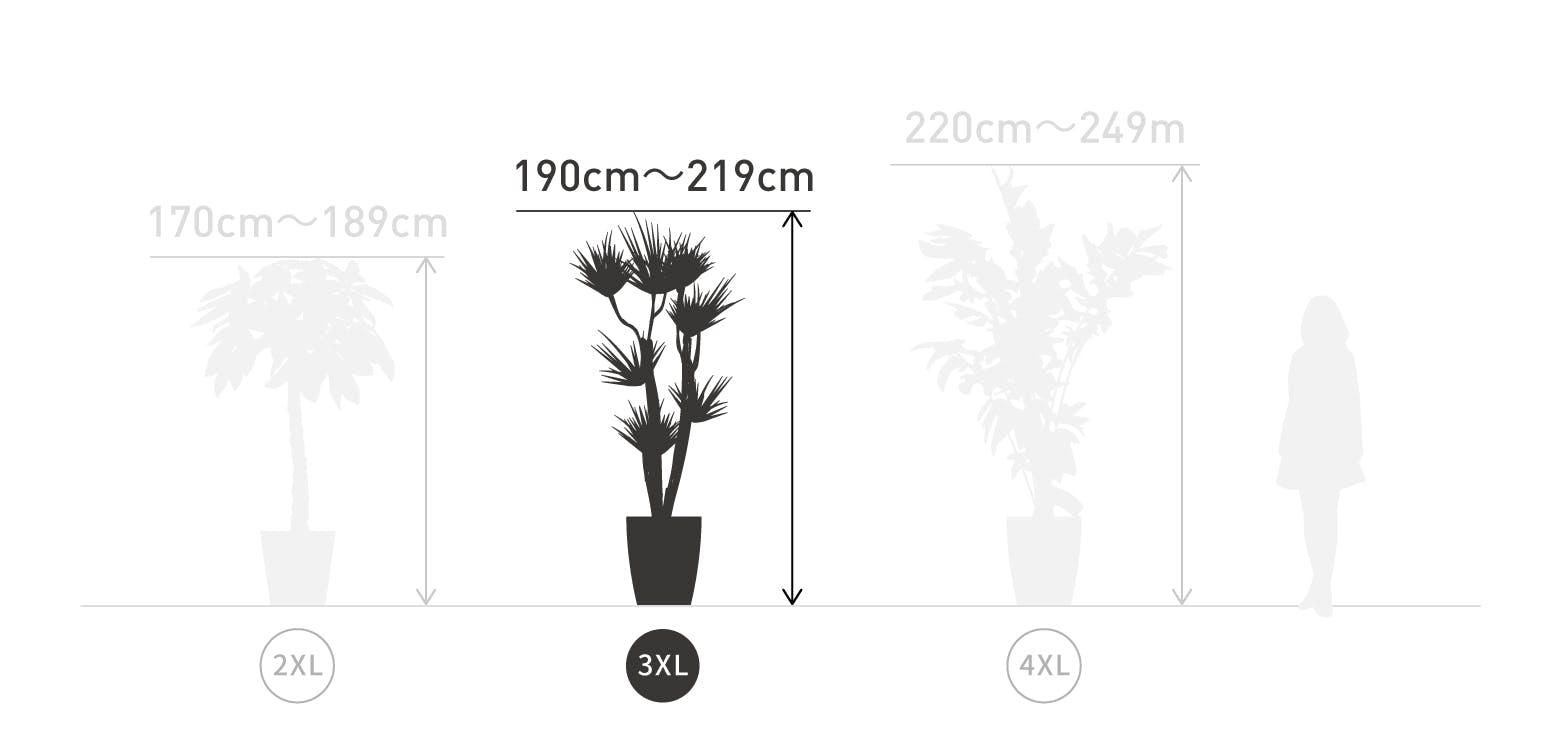 サイズ目安 3XL 190〜219cm